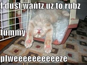 I dust wantz uz to rubz  tummy  plweeeeeeeeeeze