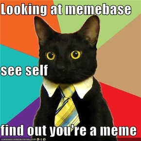 Looking at memebase see self find out you're a meme