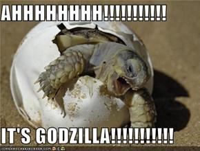 AHHHHHHHH!!!!!!!!!!!  IT'S GODZILLA!!!!!!!!!!!