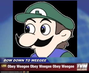 BOW DOWN TO WEEGEE - Obey Weegee Obey Weegee Obey Weegee