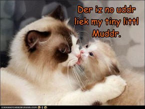 Der iz no uddr liek my tiny littl Muddr.