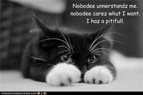 Nobodee unnerstandz me. nobodee carez whut I want. I haz a pitifull.