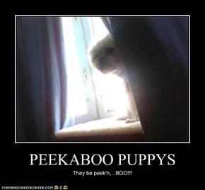PEEKABOO PUPPYS