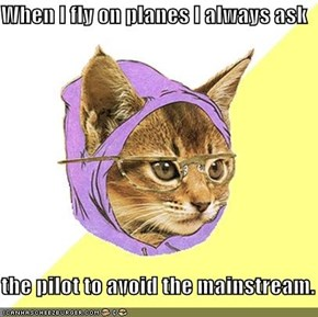 When I fly on planes I always ask  the pilot to avoid the mainstream.