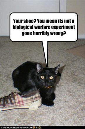 Your shoe? You mean its not a biological warfare experiment gone horribly wrong?