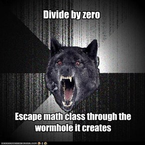 Insanity Wolf: Divide by zero