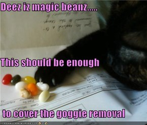 Deez iz magic beanz..... This should be enough  to cover the goggie removal
