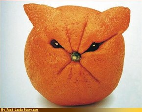 Bad-Tempered Orange