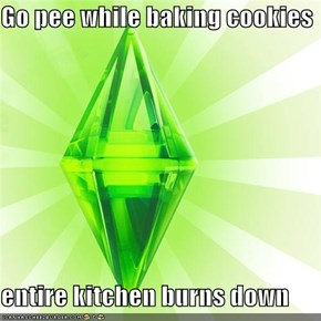 Go pee while baking cookies  entire kitchen burns down