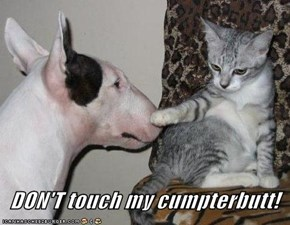 DON'T touch my cumpterbutt!