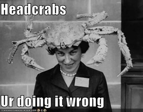 Headcrabs  Ur doing it wrong
