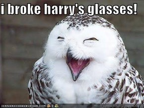 i broke harry's glasses!