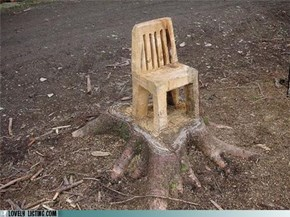Chair is Preparing His Stump Speech