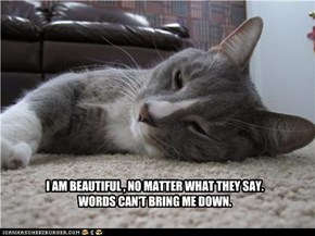 yes you are beautiful,kitteh