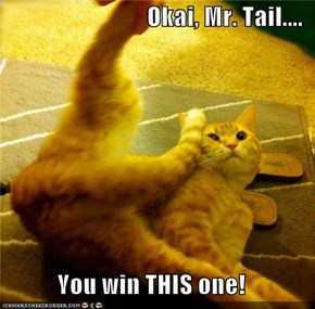 Okai, Mr. Tail....  You win THIS one!