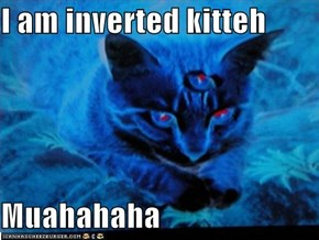 I am inverted kitteh  Muahahaha