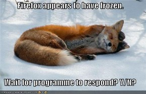 Firefox appears to have frozen.   Wait for programme to respond? Y/N?