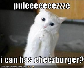 puleeeeeeezzze  i can has cheezburger?