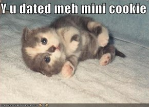 Y u dated meh mini cookie