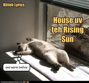Kitteh Lyrics