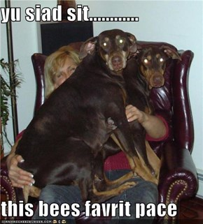 yu siad sit............  this bees favrit pace