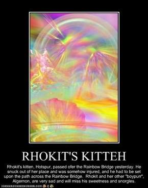 RHOKIT'S KITTEH