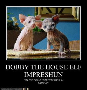 DOBBY THE HOUSE ELF IMPRESHUN