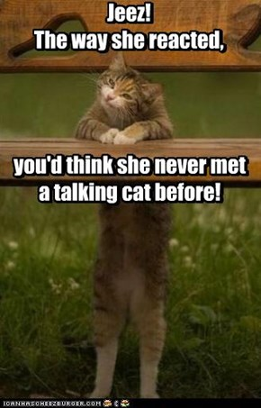 Jeez! The way she reacted, you'd think she never met a talking cat before!