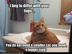 You do not need a smaller cat, you need a bigger sink!
