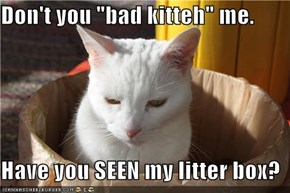 "Don't you ""bad kitteh"" me.  Have you SEEN my litter box?"