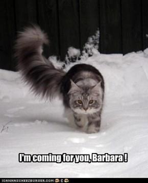 run, Barbara,run !