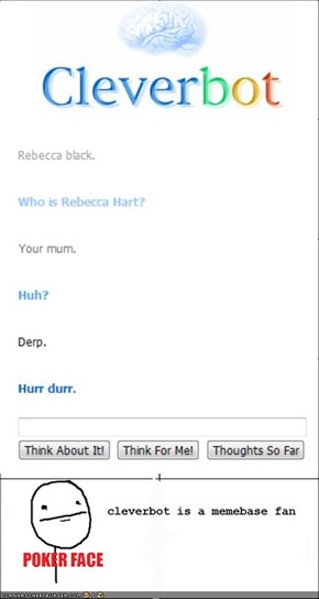 Cleverbot herp