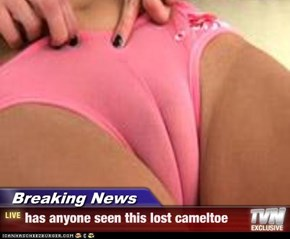 Breaking News - has anyone seen this lost cameltoe