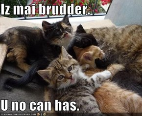Iz mai brudder.  U no can has.