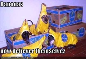 Bananas  now deliever themselvez