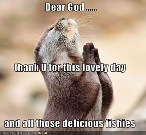 Dear God ..... thank U for this lovely day and all those delicious fishies