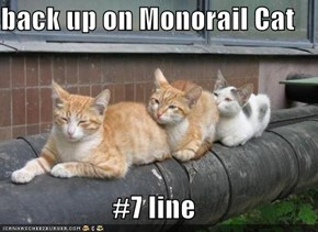 back up on Monorail Cat  #7 line