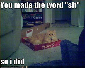 "You made the word ""sit""  so i did"