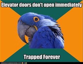 Paranoid Parrot: Elevators
