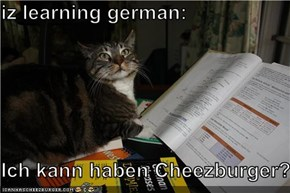 iz learning german:  Ich kann haben Cheezburger?