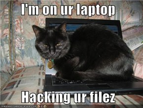 I'm on ur laptop  Hacking ur filez