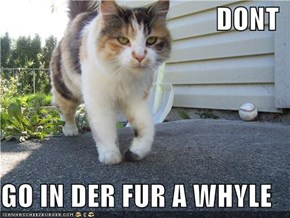 DONT  GO IN DER FUR A WHYLE