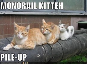 MONORAIL KITTEH  PILE-UP
