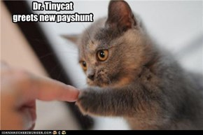 Dr. Tinycat greets new payshunt