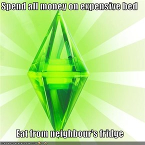 Spend all money on expensive bed  Eat from neighbour's fridge