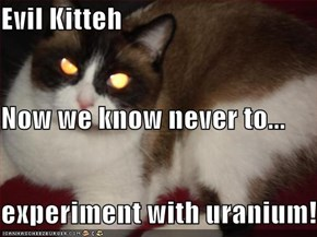Evil Kitteh Now we know never to... experiment with uranium!