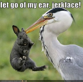 let go of my ear, jerkface!
