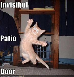 Invisibul Patio Door