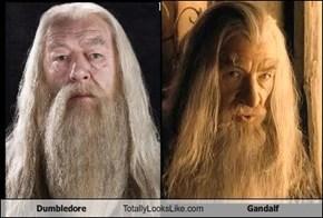 Dumbledore Totally Looks Like Gandalf