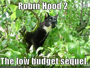 Robin Hood 2  The low budget sequel.